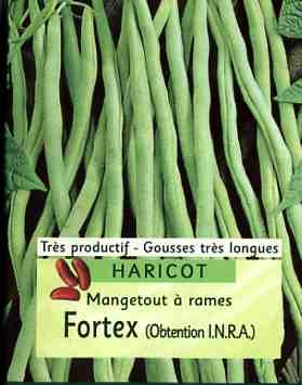 harcots001.jpg