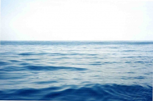 pacific3003.jpg